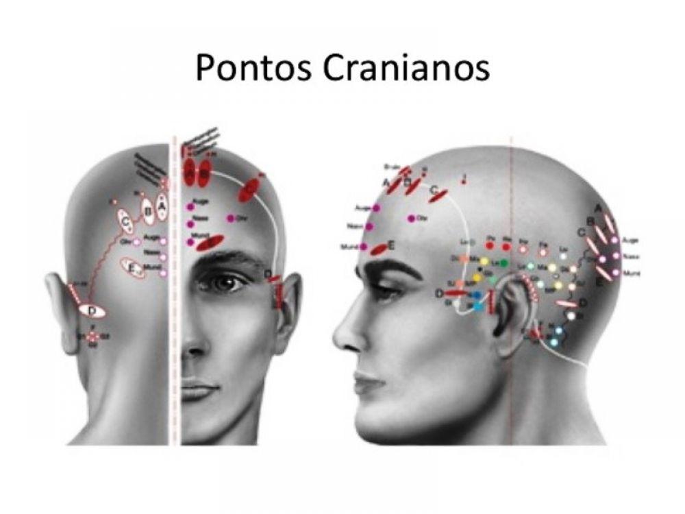 Pontos Cranianos
