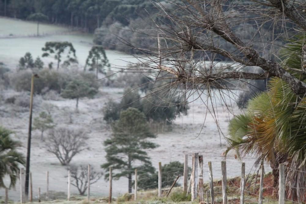 Veja FOTOS do frio no Paraná neste sábado (6)