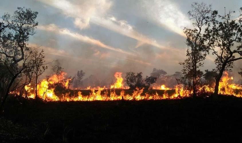 Ar seco, fumaça e a falta de controle às derrubadas e queimadas.