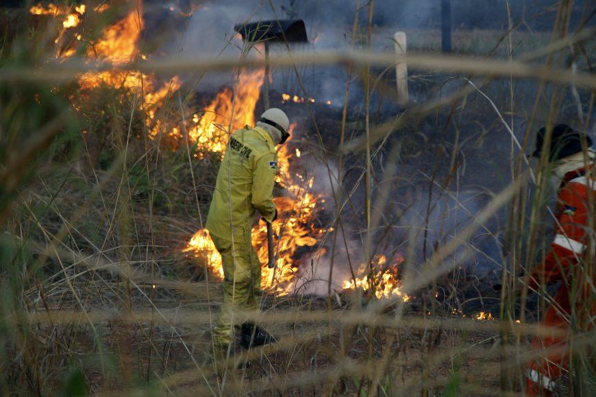 Crimes ambientais também são desvendados pela Politec. Fotos: Frank Nery e Claudino Marques Secom - Governo de Rondônia