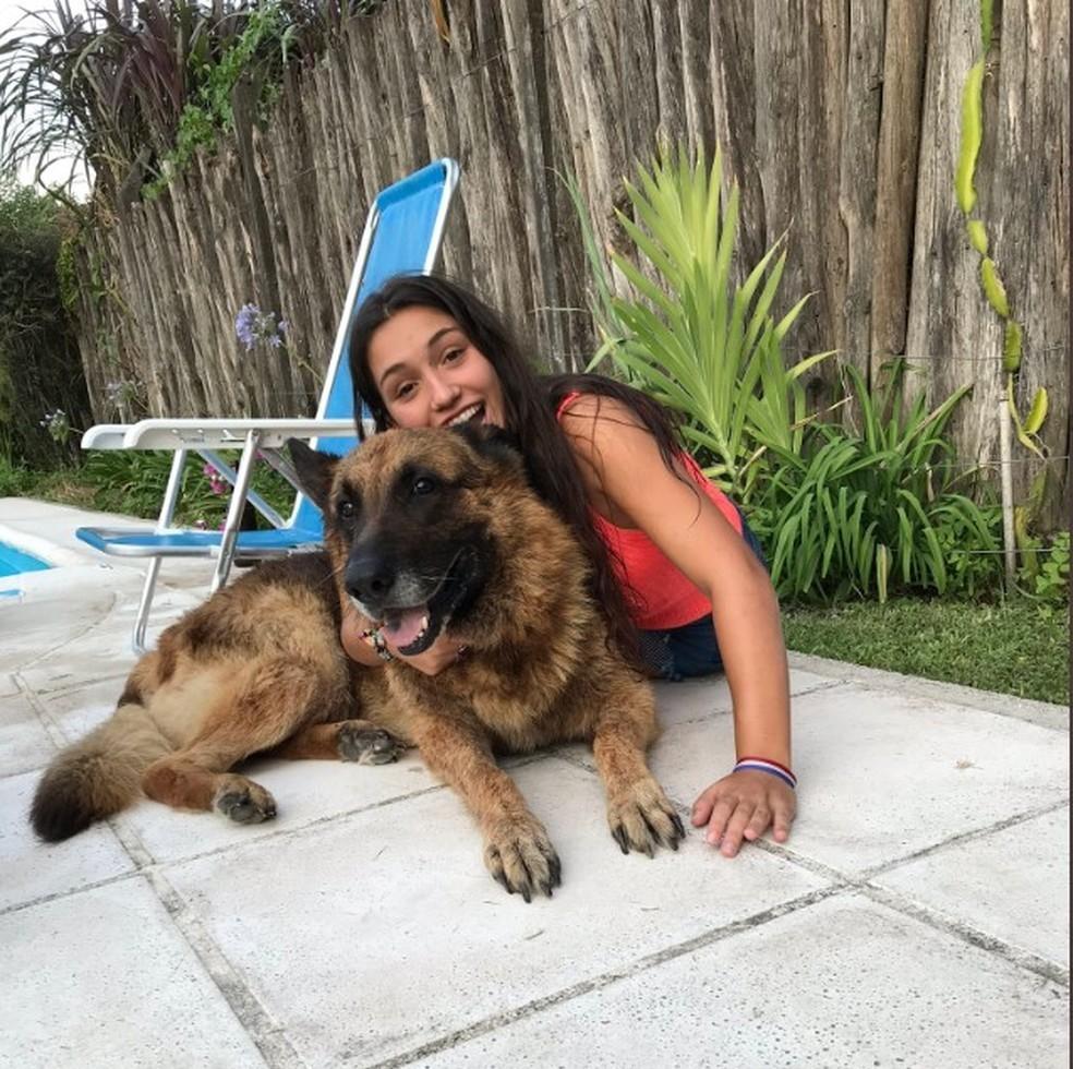 Jovem tira foto com cachorro, toma mordida, leva pontos na cara e publica imagens em rede social